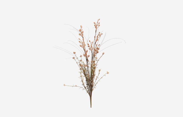 Flor seca Bayas