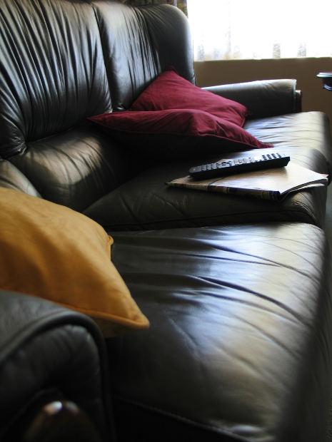 Tipos de tapizado en Camino a casa: PVC