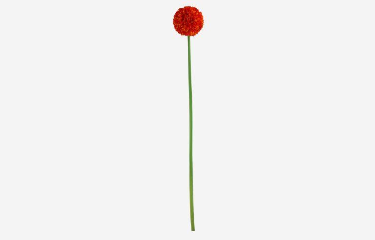 Flor Daisy ball naranja